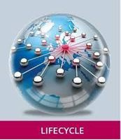 Picture for category Lifecycle